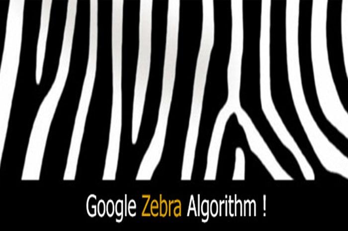 هدف گوگل از الگوریتم گورخر