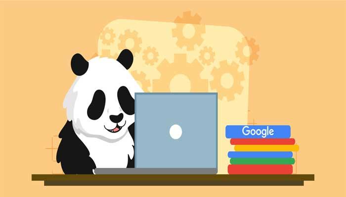 panda algorithm چه چیزهایی را هدف حمله قرار میدهد؟