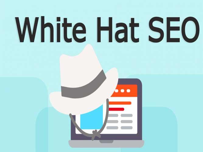 سئوی کلاه سفید