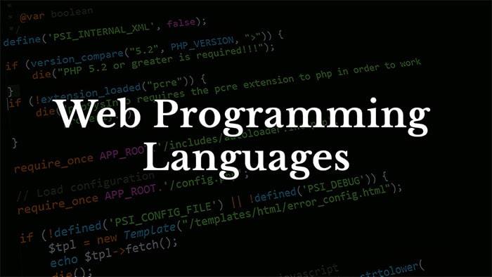 معرفی زبان های برنامه نویسی تحت وب