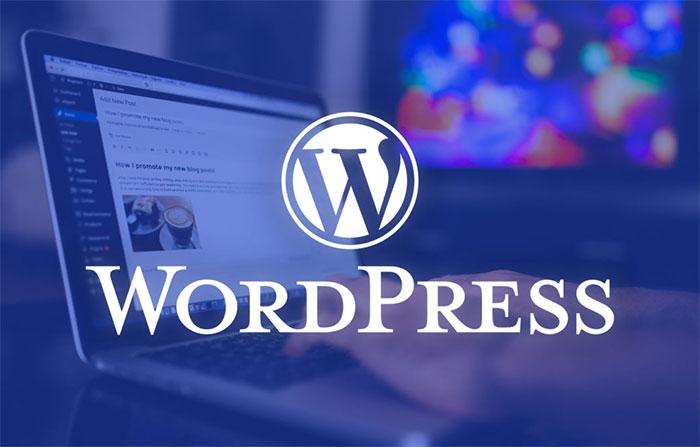 بهترین سیستم مدیریت محتوا وردپرس WordPress