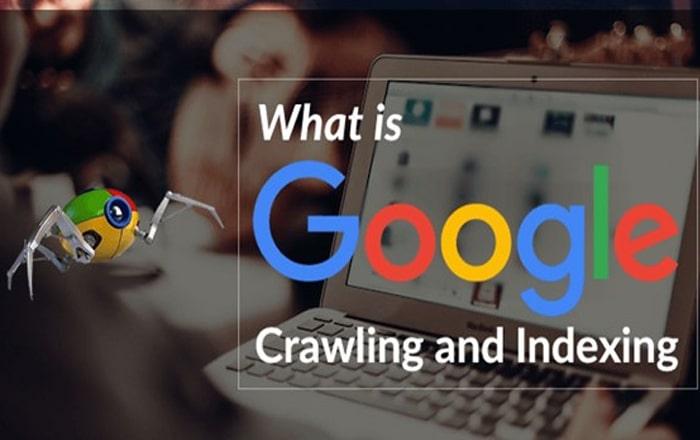 عدم اجازه دادن به خزنده های گوگل برای کرول کردن سایت