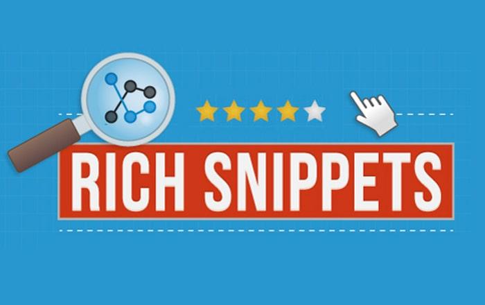 Rich Snippet از چه نوع محتوایی پشتیبانی می کند؟