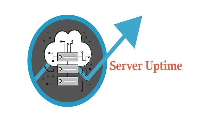 عوامل موثر در تعیین uptime سرور