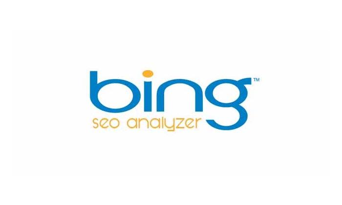 Bing Seo Analyzer