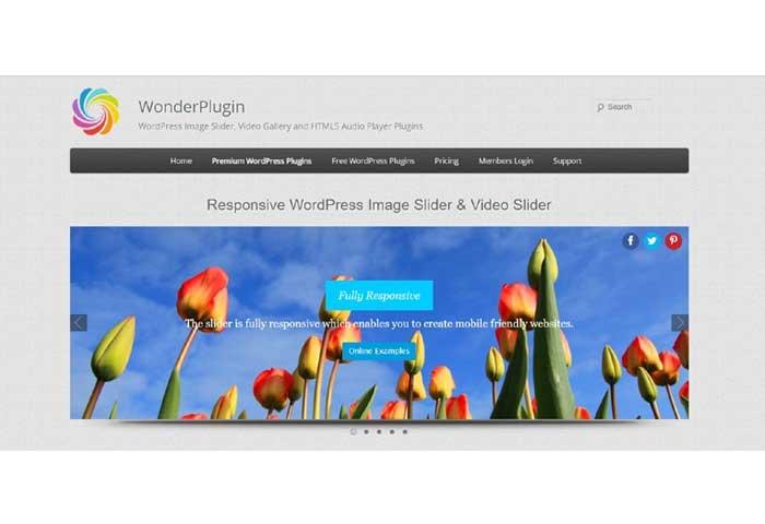 افزونه WonderPlugin WordPress Slide