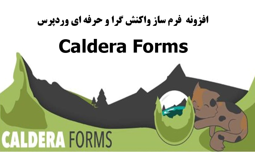 افزونه Caldera Forms