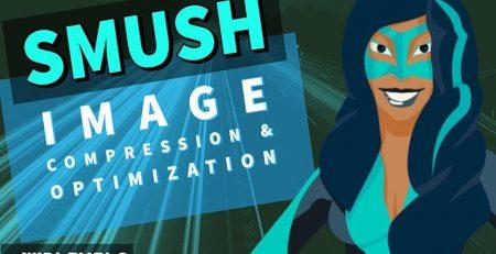افزونه Smush Image Optimization